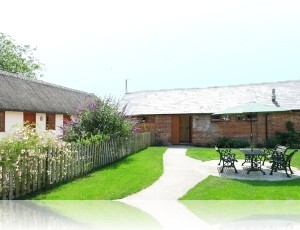 new-forest-holiday-cottages